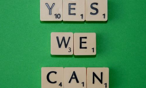 yes we can R_B_by_Dieter-Schuetz_pixelio.de